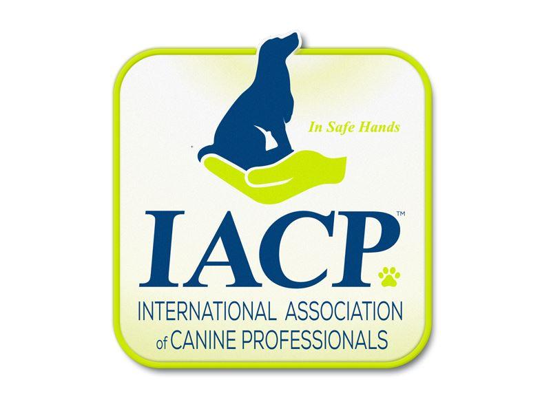 2017 IACP Podcast